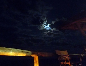 Kalahari Night Sky